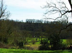 Paysage d'Azay-le-Brûlé