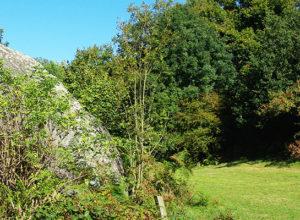 Jardin des chirons à Largeasse