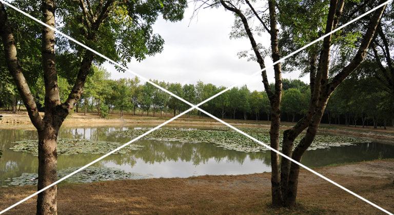 Gestion intensive non justifiée d'un plan d'eau