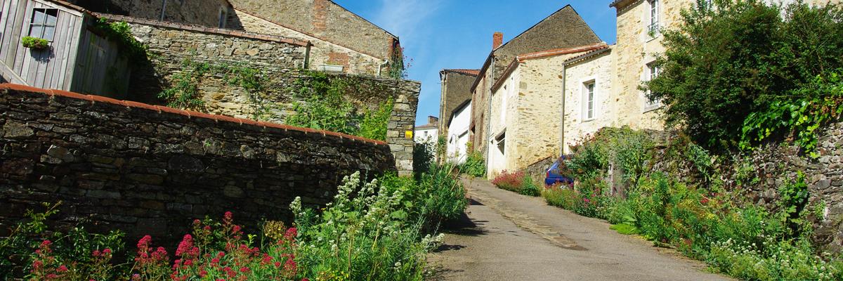 Rue de Mouchamps (85)